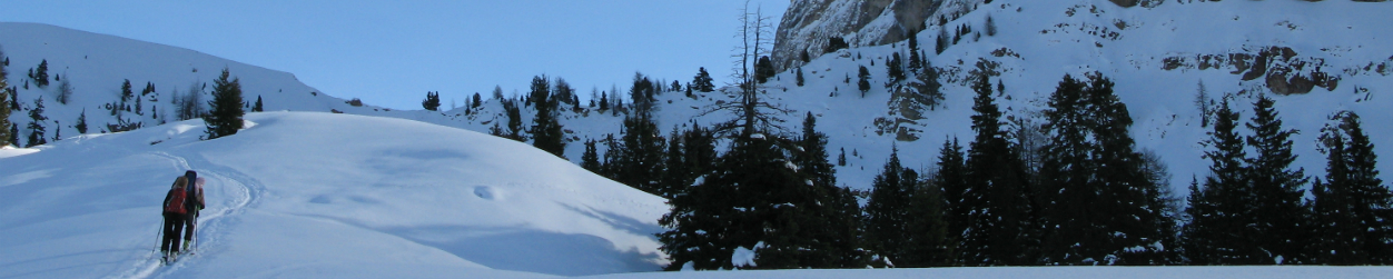 skiing-banner